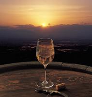 塩尻のワイナリーと酒蔵めぐりのイメージ